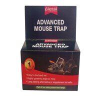 Advanced Mouse Trap
