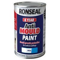 6 Year Anti Mould Paint White Matt 2.5 litre