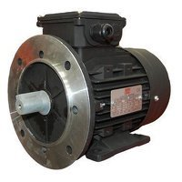TEC Electric Motor 0.75HP Flange Mount 3...