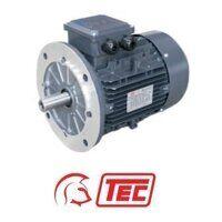 TEC IE2 Electric Motor 4kW 3ph 2 Pole B5 Flange Mo...