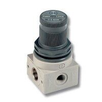5207004 Miniature Pressure Regulator 0-12 bar G1/4