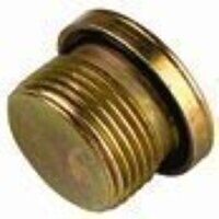 VSCH-R1/WD G1inch Light Duty Blanking Plug with Ca...