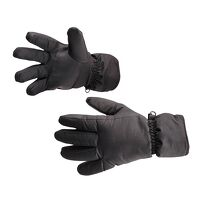 Waterproof Ski Glove (Black / R)