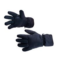 Waterproof Ski Glove (Navy / R)