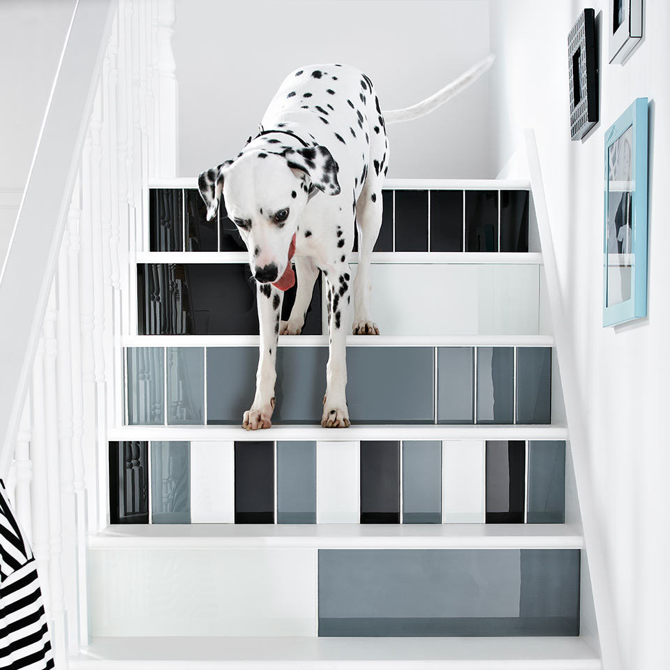 Impact Dog Staircase