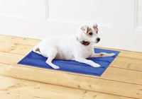 New Cooling Pet Mats (Box Quantity 4)