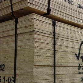 2440x1220x12mm-ccx-fsc-ce2--bba-graded-elliotis-pine-plywood-[f]-sheathing.jpg