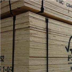 2440x1220x18mm-ccx-fsc-ce2--bba-graded-elliotis-pine-plywood-[f]-sheathing.jpg