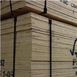 2440x1220x9mm-ccx-fsc-ce2-elliottis-pine-plywood-f-sheathing-