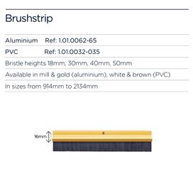 exitex-brushstrip-face-fix-gold-22mm-bristle-914mm--10