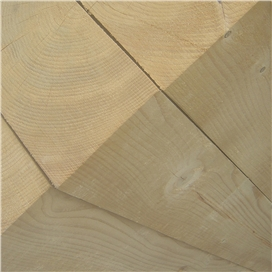 imported-whitewood-rough-sawn-wet-graded-100x250mm-6-6m-c16-c24-p