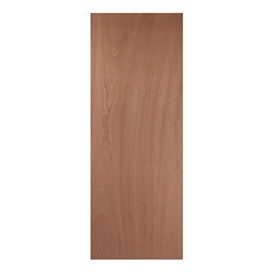 paint-grade-plywood-door