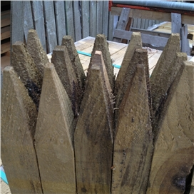 pointed-pegs-50x50mm-0.6m-f