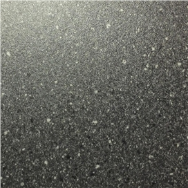 pp5013-black-fleck-1