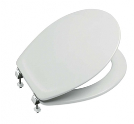 roca-laura-luxury-wc-seat-and-cover-white-s-s-hinges-ref-801910-4