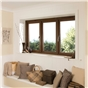 oak-windows-3
