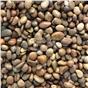 scottish-pebbles-30-50mm-decorative-aggregate-20kg-bag-70-no-per-pallet-