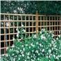 trellis-panel-6x6-ft66a.jpg