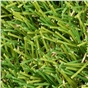 wisdom-40mm-artificial-grass-x-4m-wide-sold-per-linear-metre-1