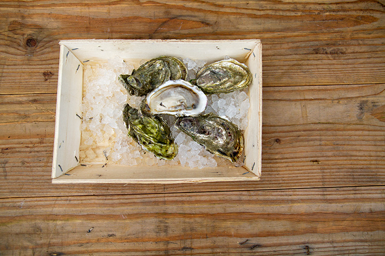 Guernsey_Oysters_Bella_Luce_01_post.jpg