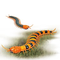 Giant Infra Red Control Centipede