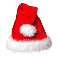 Red & White Plush Santa Hat