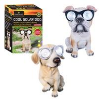 Dog W/Solar Glasses-2Asst