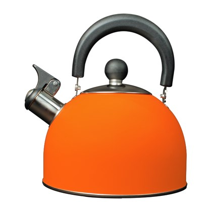 2L Stainless Steel Kettle - Orange