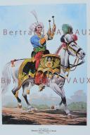 RIGO (ALBERT RIGONDAUD) : LE PLUMET PLANCHE ES2 : GARDE IMPERIALE REGIMENT DES CHASSEURS A CHEVAL TIMBALIER 1806. (1)