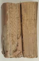 ORDONNANCE provisoire sur l'exercice et les manœuvres de la cavalerie. Paris, 1809, 2 vol. in-8, br. débr. (2)