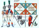 RIGO (ALBERT RIGONDAUD) : LE PLUMET PLANCHE 171 : LEGION HANOVRIENNE DRAPEAU 1808-1811.
