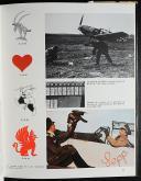 Photo 3 : LES MESSERSCHMITT DANS LA BATAILLE D'ANGLETERRE -  LE BF 109E