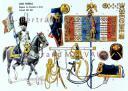 RIGO (ALBERT RIGONDAUD) : LE PLUMET PLANCHE 199 : GARDE IMPERIALE REGIMENT DES GRENADIERS A CHEVAL ETENDARD 1813-1814. (1)