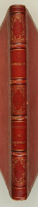 JOINVILLE (Col. de). Armée d'Afrique. Division d'Oran. Année 1852.  (3)