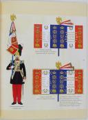 GRENADIERS & VOLTIGEURS DE LA GARDE IMPERIALE DE NAPOLÉON III (6)