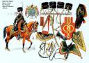 RIGO (ALBERT RIGONDAUD) : LE PLUMET PLANCHE 204 : GARDE DES CONSULS CHASSEURS A CHEVAL CHEF D'ESCADRON EUGENE DE BEAUHARNAIS 1800-1801.