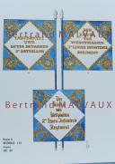 RIGO (ALBERT RIGONDAUD) : LE PLUMET PLANCHE D26 : DRAPEAUX ÉTENDARDS ROYAUME DE WESTPHALIE (II) 1808-1814