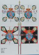 RIGO (ALBERT RIGONDAUD) : LE PLUMET PLANCHE D19 : DRAPEAUX ÉTENDARDS GRAND DUCHÉ DE HESSE (I) 1806-1814