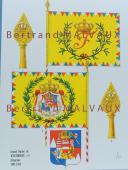 RIGO (ALBERT RIGONDAUD) : LE PLUMET PLANCHE D16 : DRAPEAUX ÉTENDARDS GRAND DUCHÉ DE WURTZBOURG (I) 1805-1814 (1)
