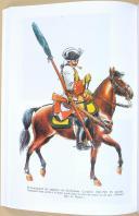 Photo 8 : Drapeaux et étendards du Roi - Par Pierre CHARRIE