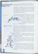 Photo 2 : CASANOVA & BASTIE - Les armes de la royale