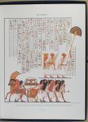 """CHAMPOLLION - """" Monuments de l'Égypte et de la Nubie par Champollion """" - Planches - Paris   (7)"""