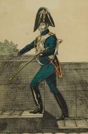 Photo 2 : MARTINET : Troupes françaises, planche 259, dragon de la Garde Impériale en petit uniforme, Premier Empire.
