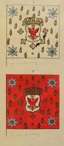 TRIOMPHES DU ROY LOUIS LE GRAND (Les) 1674-1714 (6)
