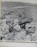 """Photo 4 : """" Du Tchad au Rhin """" - L'armée Française dans la guerre - Tome I - Tunisie"""