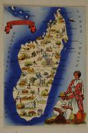 Photo 1 : Carte postale mise en couleurs représentant la région «D'ORAN».