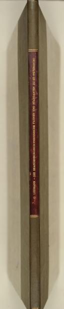 LEHMANN - HOHENZOLLERN Jahrsbuch 1902. Die Brandenburgischen-preussische Fahnen und Standarten zu St. Petersburg.  (2)