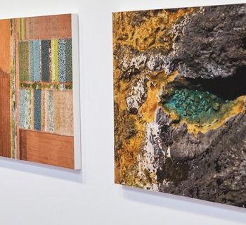 José Luis López Monzón y Guadalupe Martínez, ganadores de los premios de Fotografía y Artes Plásticas de la Fundación CajaCanarias