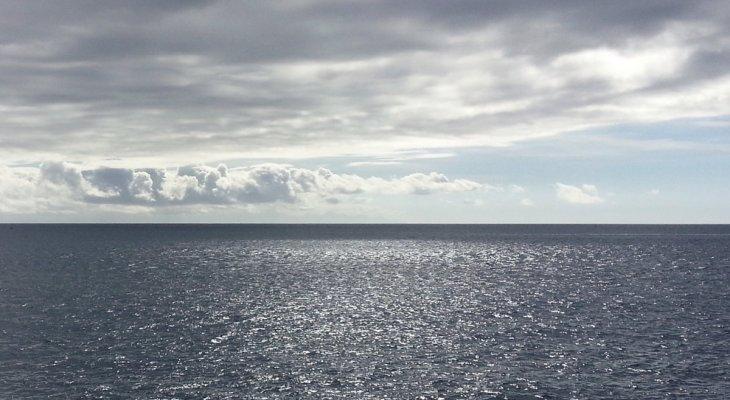 Viva el Mar, Diego Hernández
