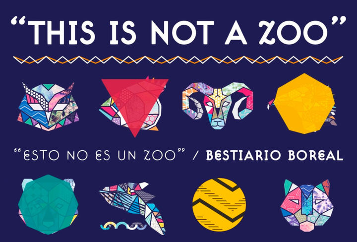 This is not a zoo Boreal 2019